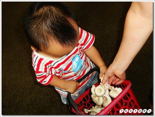 20090825-豐年菇類生態農場~47.jpg