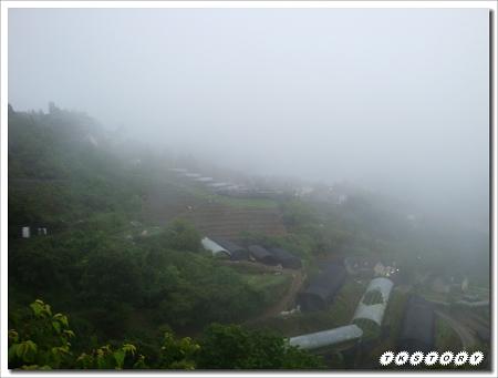 20100424-南投春大地~17.jpg