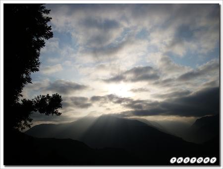 20100424-南投春大地~63.jpg