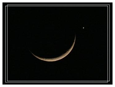 金星貼月-1.jpg