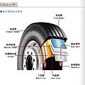 輪胎結構圖.jpg
