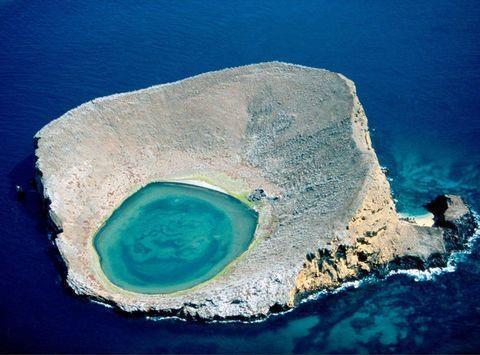 厄瓜多爾的加拉帕戈斯群島