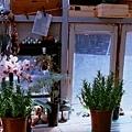 開店以前這裡就像是私人的小花園