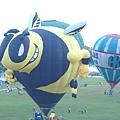 1030616_台東熱氣球30.jpg