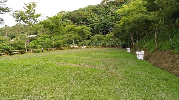 景庭7.jpg
