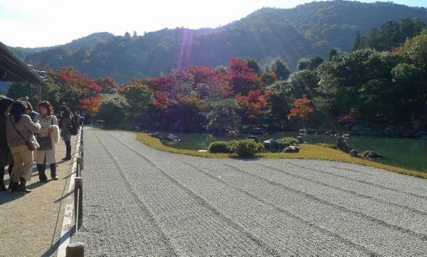 調整大小庭園如畫4.jpg