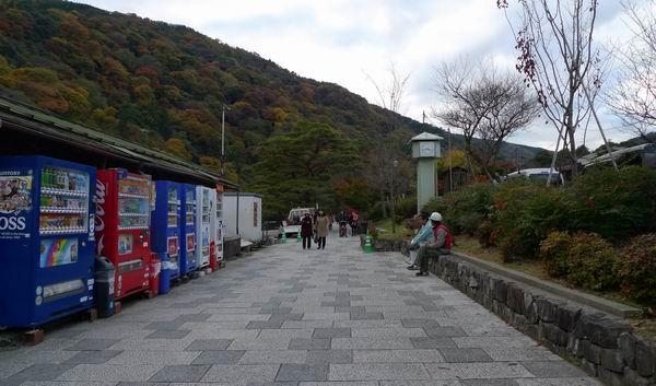 調整大小嵐山公園1.jpg