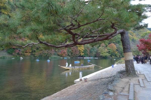 調整大小嵐山公園6.jpg