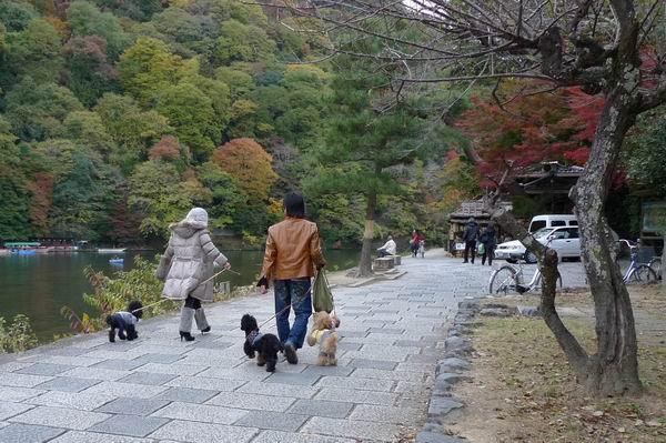 調整大小嵐山公園-遊客2.jpg