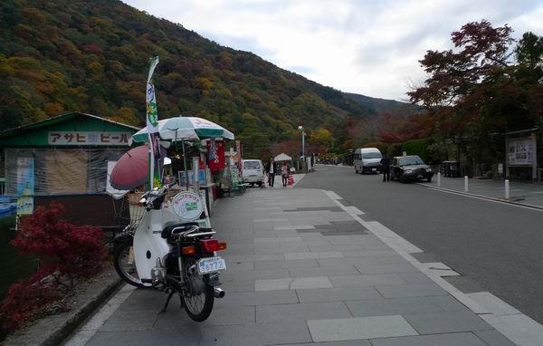 調整大小嵐山公園4.jpg