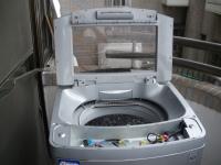 LG樂金洗衣機WT-D130PG137.JPG