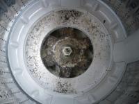 PANASONIC國際牌洗衣機NA-95UXF36.JPG