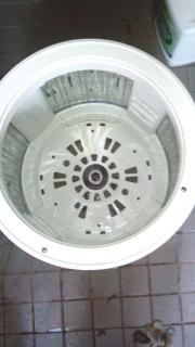 SF-BW11K-7.jpg