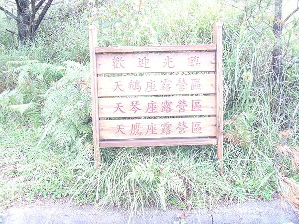 PICT0967.JPG