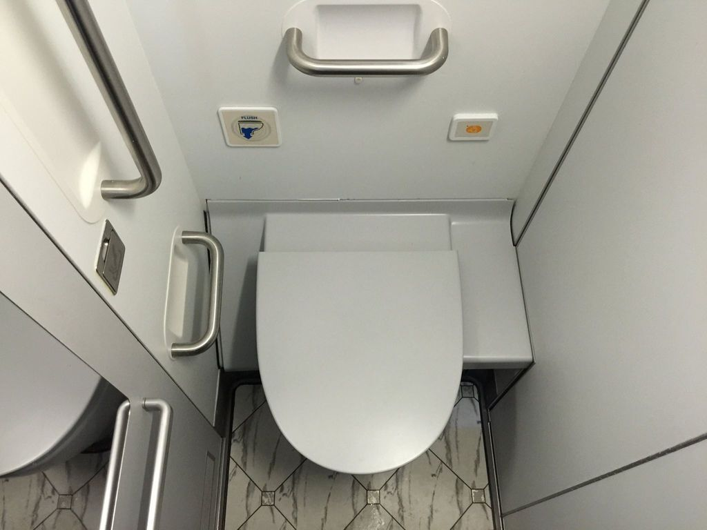 1245 IMG_3285 Lavatory in Center Part of Aircraft.jpg