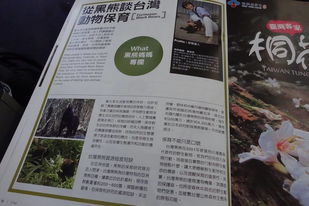 1323 DSC08290 Article on Formosa Black Bears.jpg
