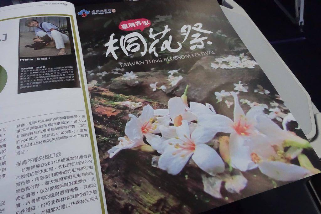 1323 DSC08291 Ad - Taiwan Tung Blossom Festival.jpg