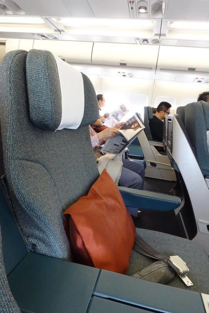 1424IMG_3734 Biz Class Seat Headrest.jpg