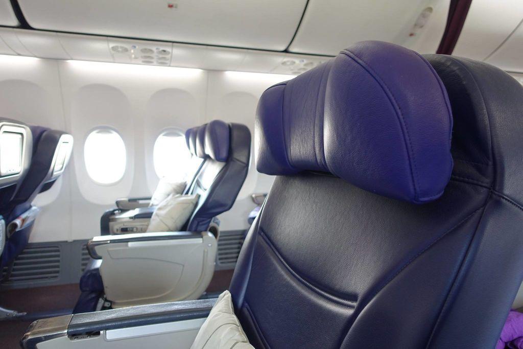 1027 02 DSC09500 Headrest