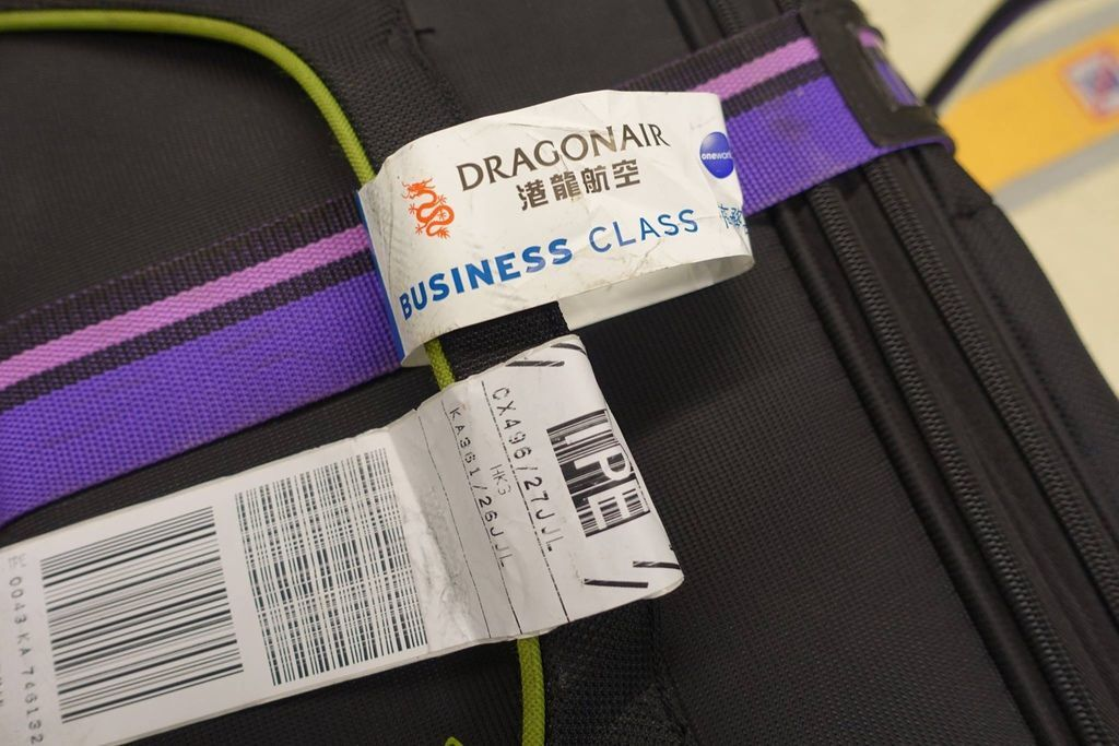 0938DSC00090 Luggage Tag (My Bag Made It Safely)