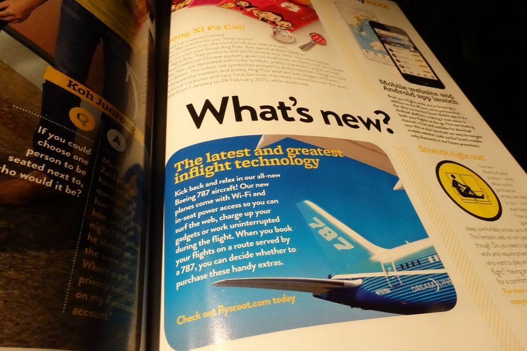 0132 DSC05763 The Dreamliner