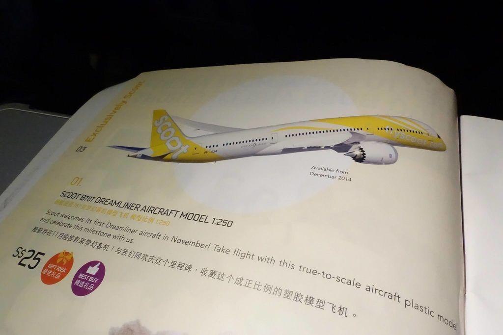 0138 DSC05784 Aircraft Model