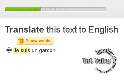 Duolingo017