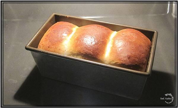 toast 009