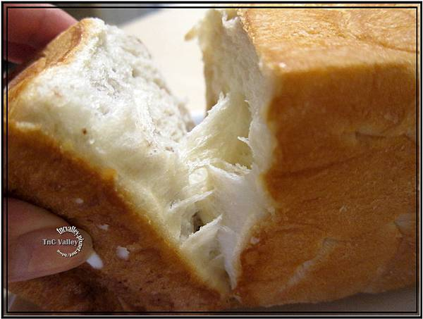 toast 011