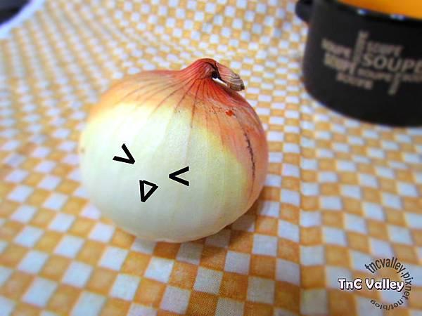 onion 001