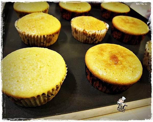 優格cupcakeIMG_8901.JPG