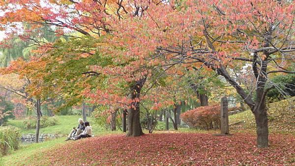 札幌中之島公園.JPG