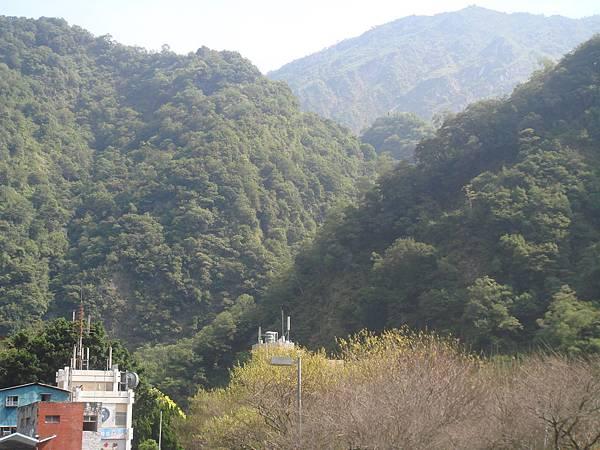 20080825-31花蓮旅遊0005.JPG