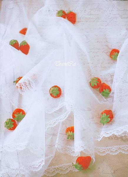 nEO_IMG_草莓 2012