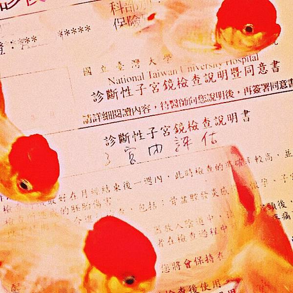 台大 陳思原 2013-7-15  (1)