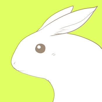 20120710-兔子