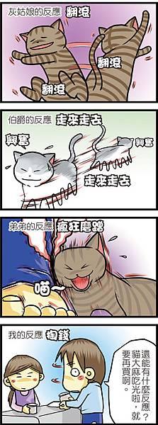 貓大麻的反應-500.jpg
