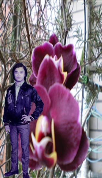 小陳與美麗花朵的照片.jpg