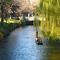 基督城。很美的Avon River