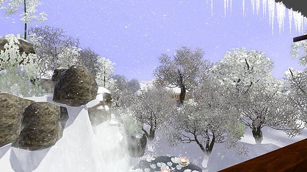 後院雪景.jpg