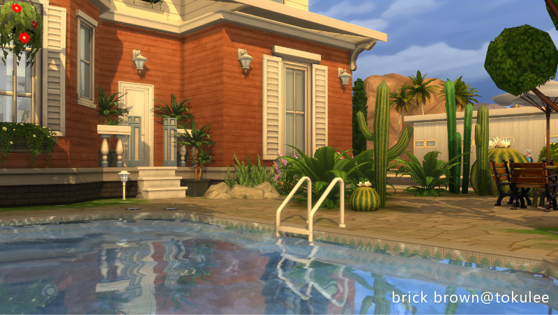 brick brown backyard2.jpg