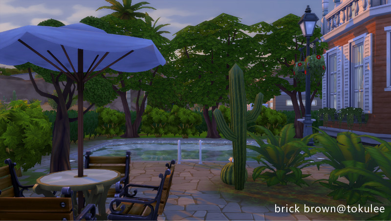brick brown backyard3.jpg