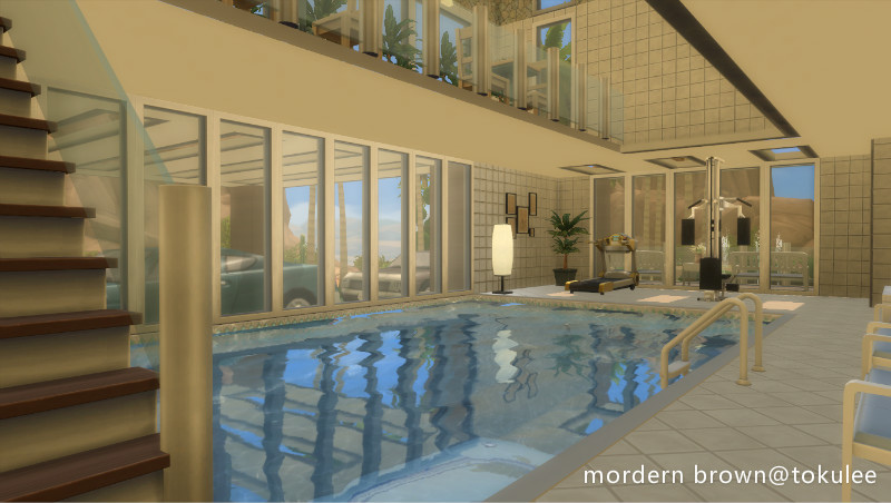 mordern brown indoorpool1.jpg