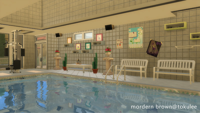 mordern brown indoorpool2.jpg