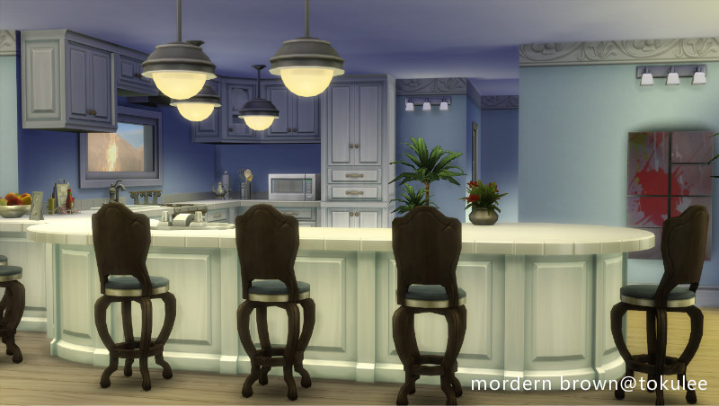 mordern brown kitchen2.jpg