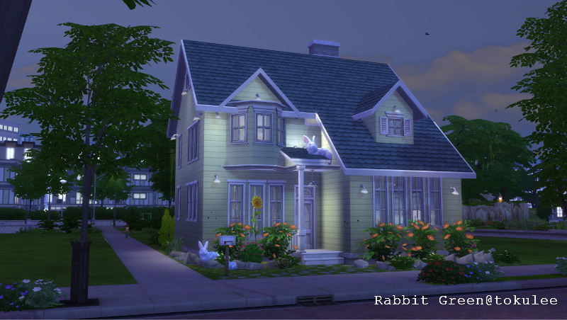 rabbit green-night1.jpg