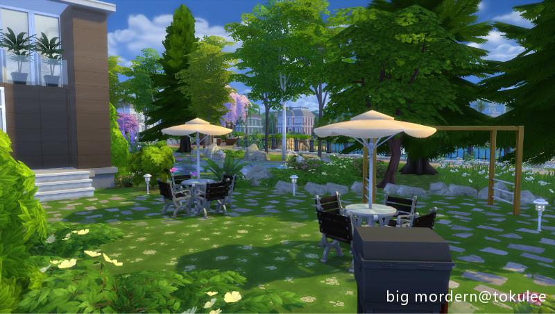 bigmordern-backyard1.jpg