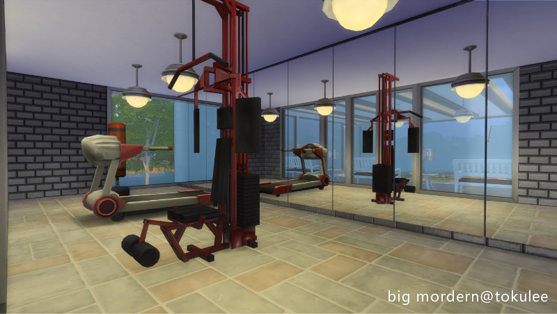 bigmordern-gym.jpg