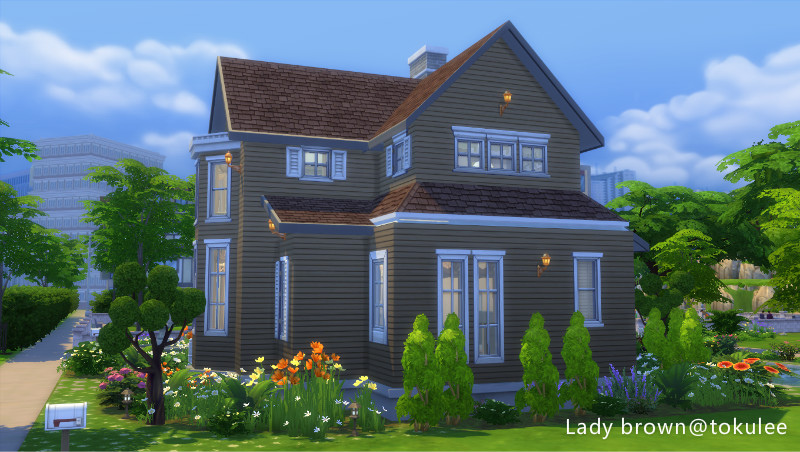 lady brown-big4.jpg
