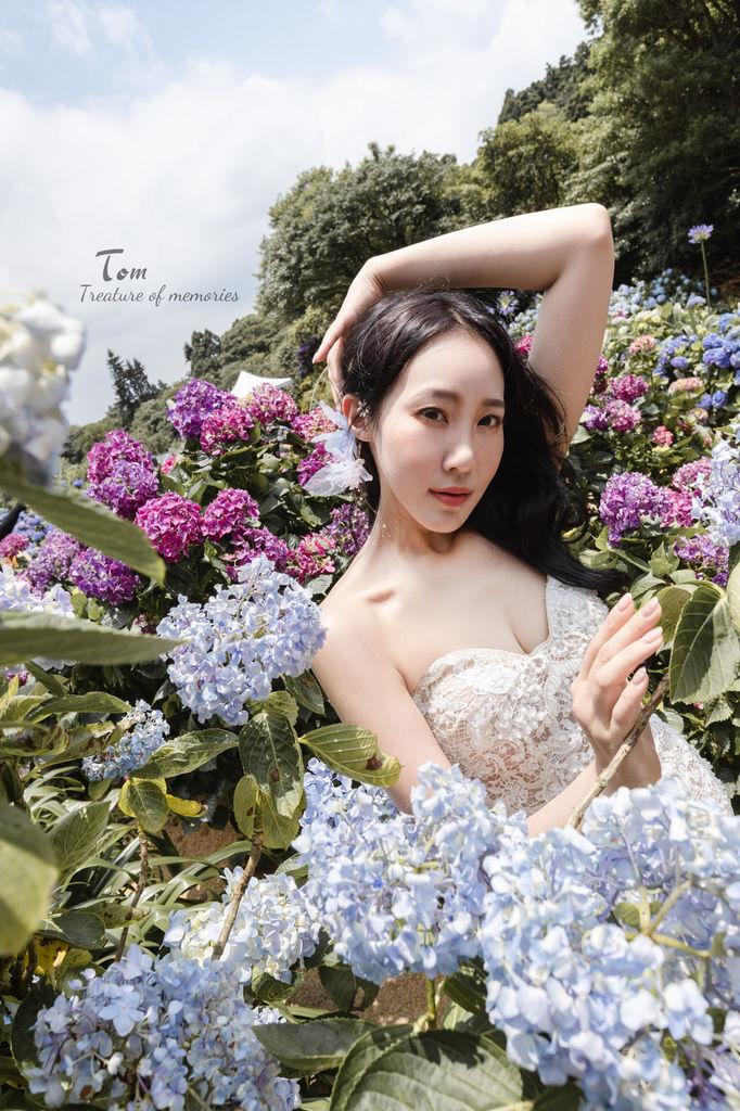 繡球花-4.jpg